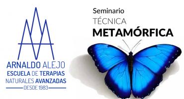ARNALDO ALEJO - SEMINARIO TÉCNICA METAMORFICA